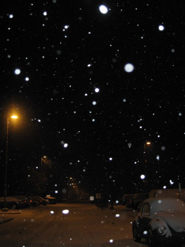 snow december 2007