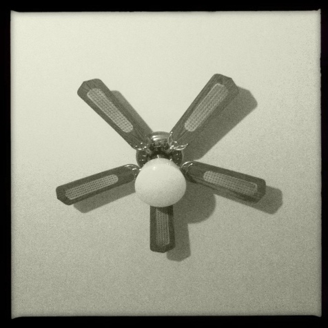 leland black and white ceiling fan