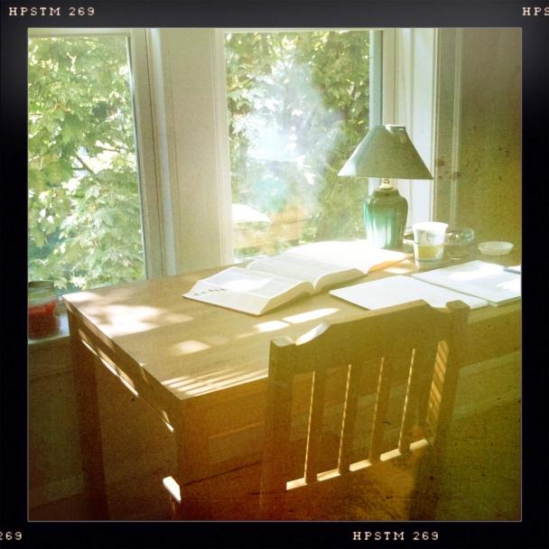 leland desk in the trees