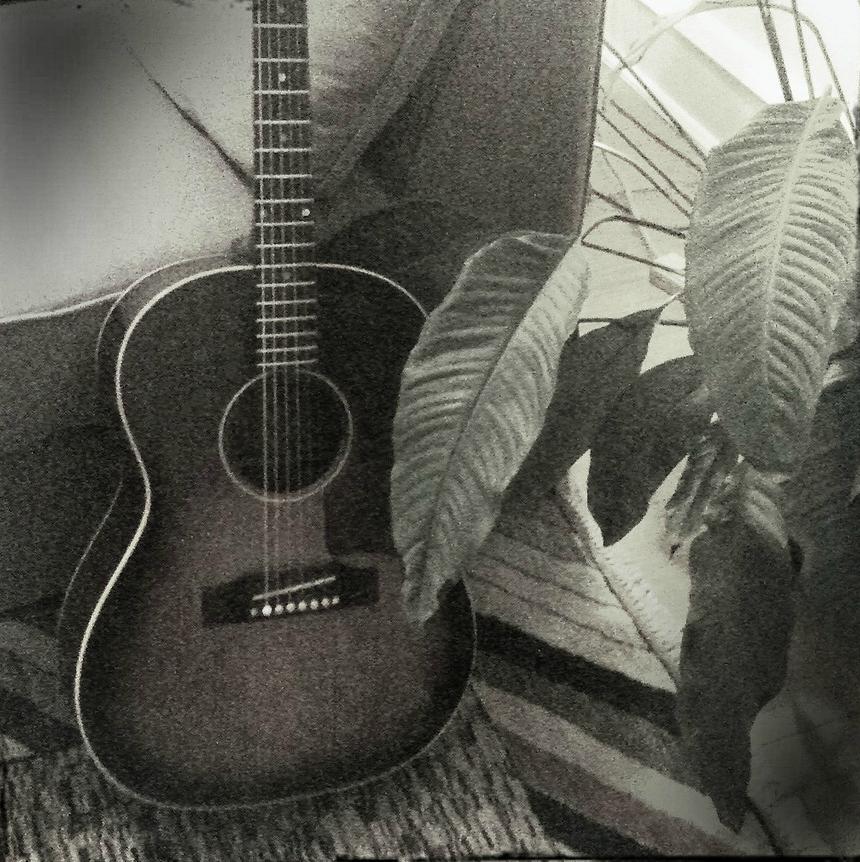guitar rug houseplant