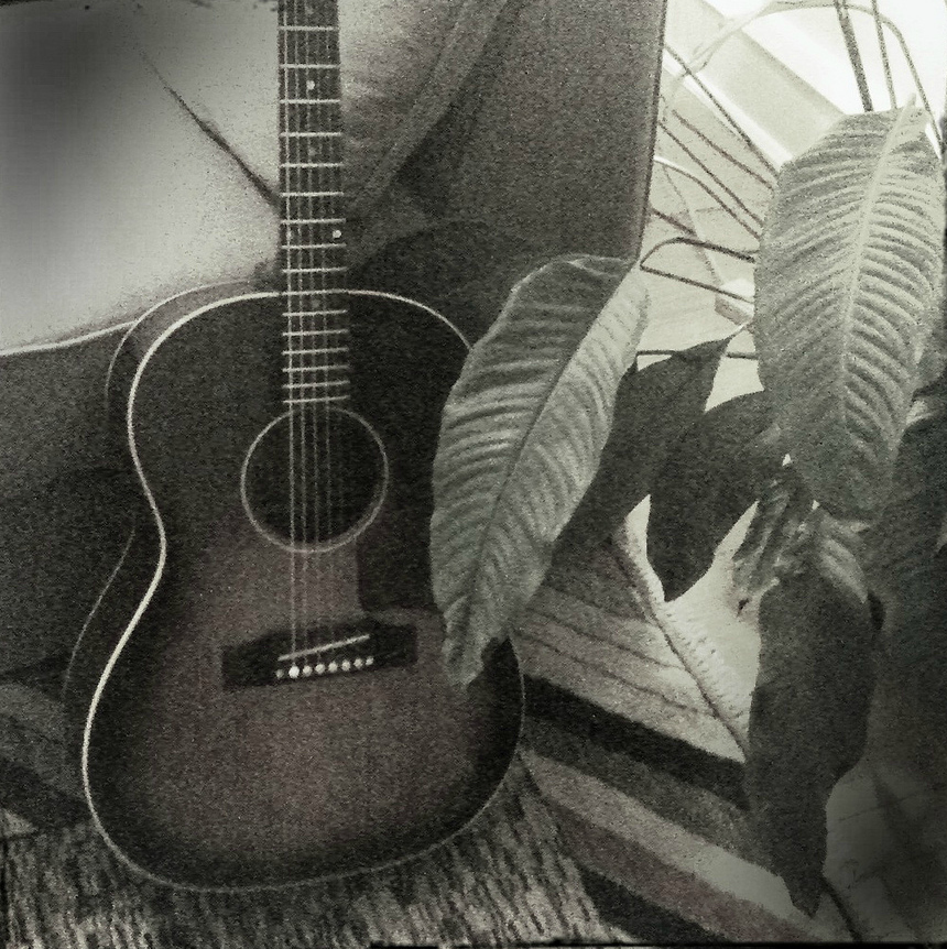 guitar rug houseplant